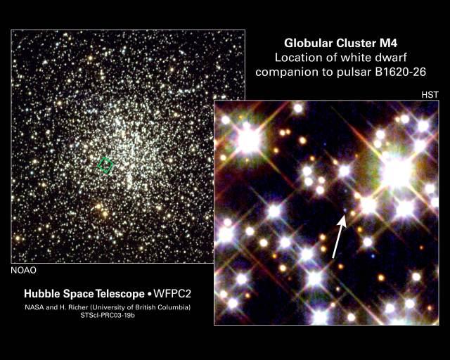 M4 glob clust white dwarfs